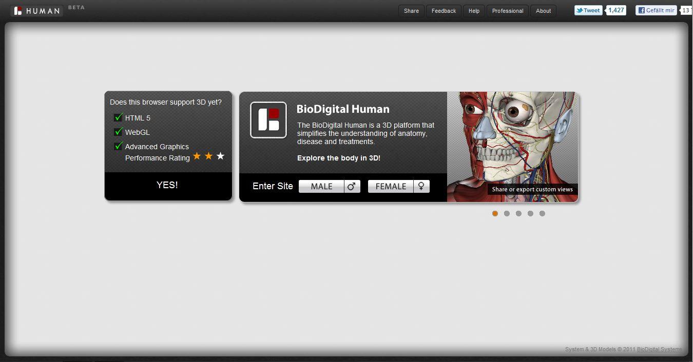 BioDigital Human - der virtuelle Körper - Webninja Tech- und ...