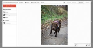 Google+ Creative Kit - Bildbearbeitung